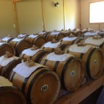 venturi balsamic vinegar room